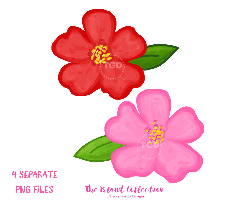 1000x800 Cherry Blossom Clipart, Watercolor Flower Clip Art, Floral Clip