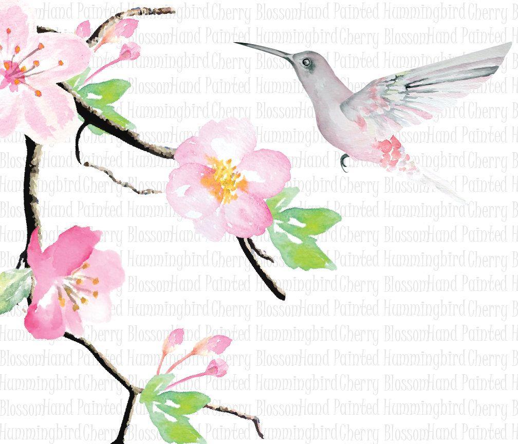 1008x864 Digital Watercolor Hummingbird Clip Art Greeting Scrapbooking
