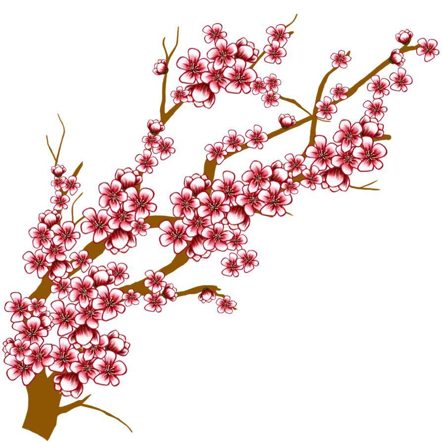 894x894 Marvelous Cherry Blossom Tree Clip Art Clipart Panda For Red
