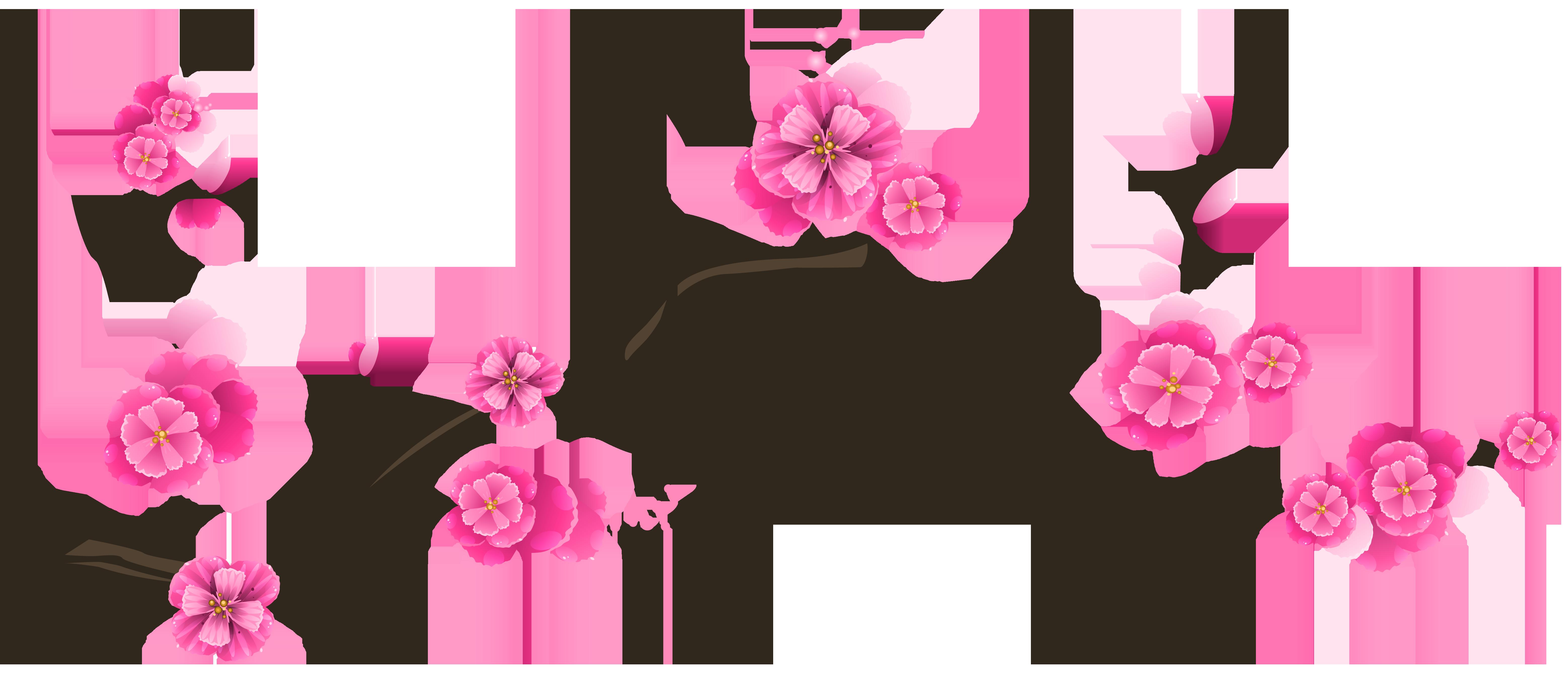 6230x2705 Sakura Branch Transparent Clip Art Imageu200b Gallery Yopriceville