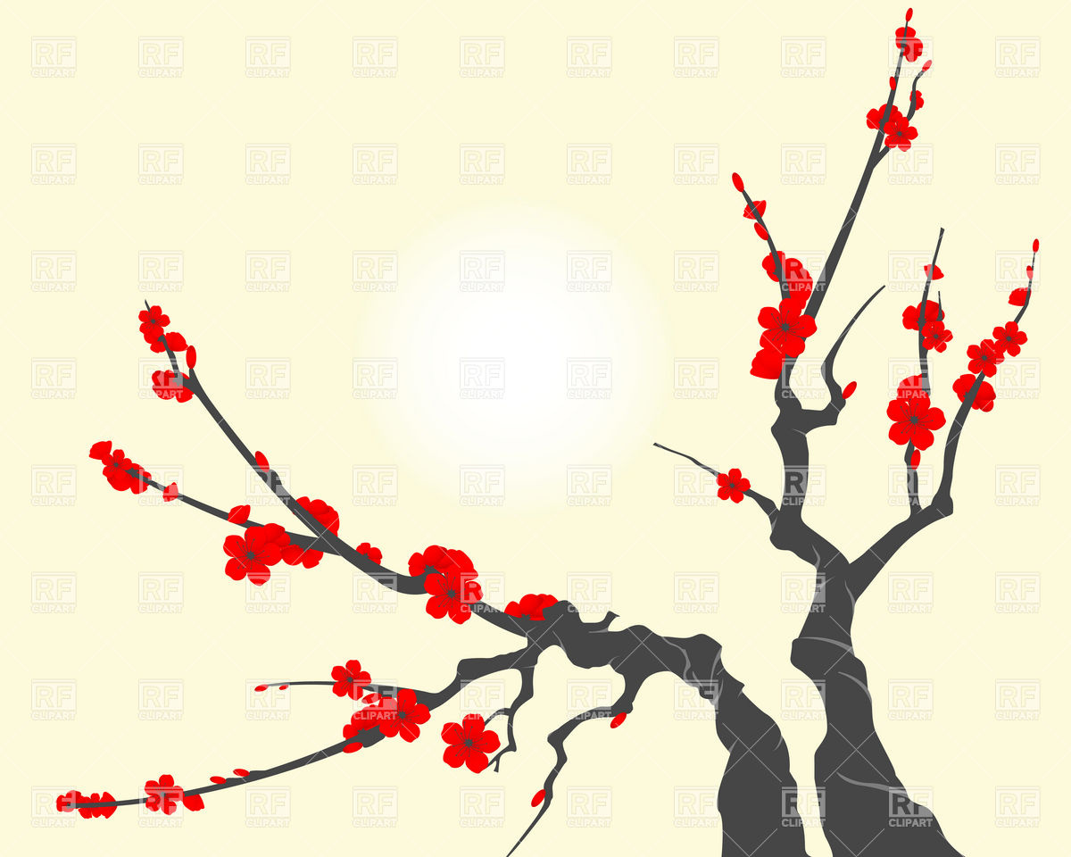 1200x960 Sakura Blossom Branch, With Cherry Flowers Vector Image Vector