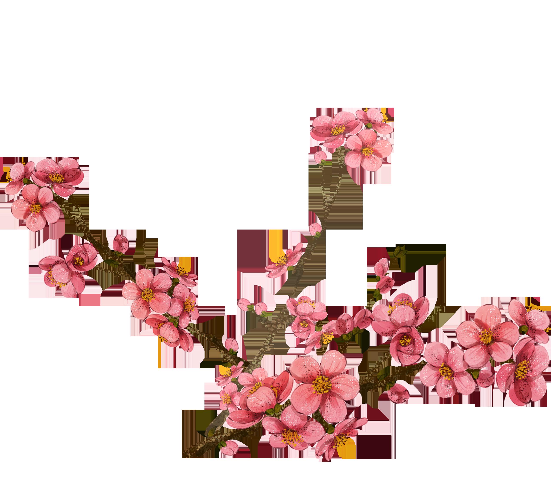 2563x2252 Watercolor Painting Plum Blossom Clip Art