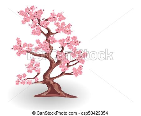 450x370 Cherry Tree With Pink Flowers. Sakura. Isolated On White