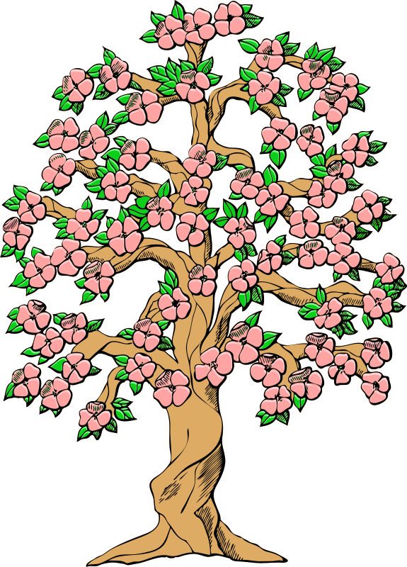 575x800 Tree Cherry Blossom Spring Clip Art