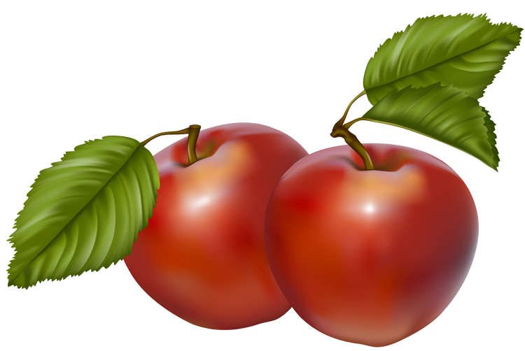 750x502 Cherry Tree Clipart Red Apple
