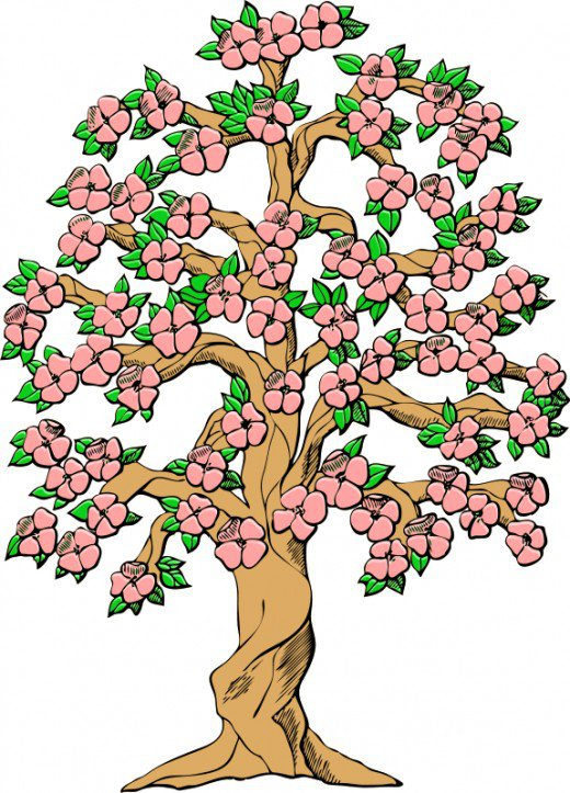 520x723 Flower Tree Cliparts