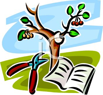 350x325 Royalty Free Clip Art Image Pruning A Cherry Tree With A Book