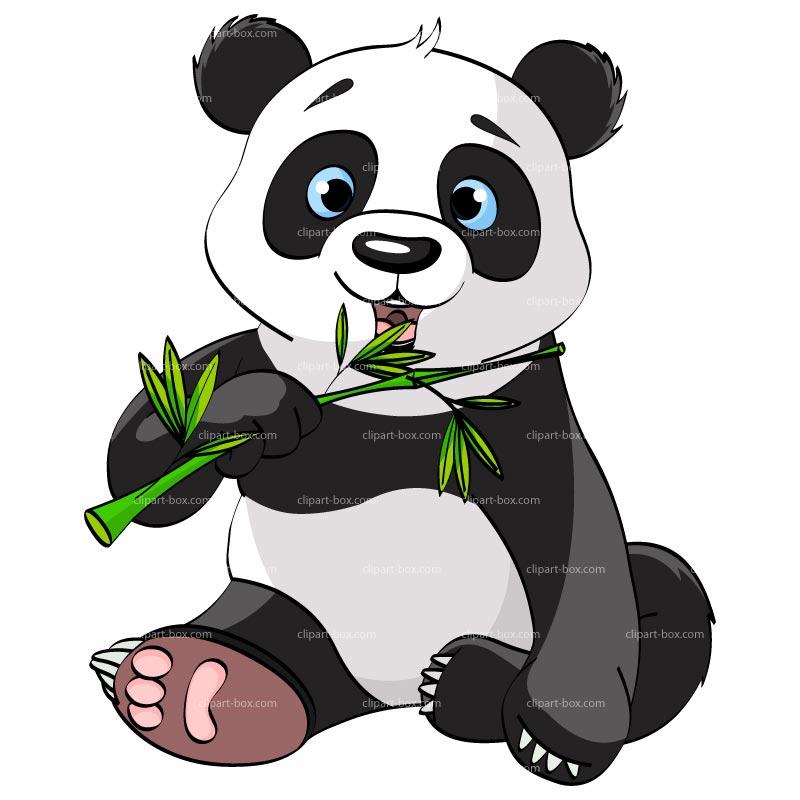 800x800 Panda Bear Clipart