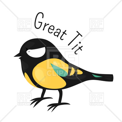 400x400 Great Tit Isolated On White Royalty Free Vector Clip Art Image