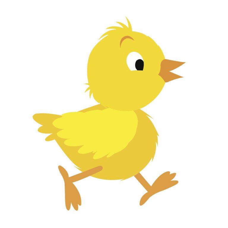 768x768 Chicken Border Clip Art Chicken Clipart Baby Chicken Clipart 1