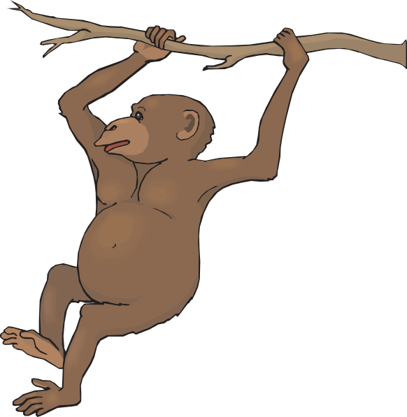 582x597 Swinging Chimp Clip Art