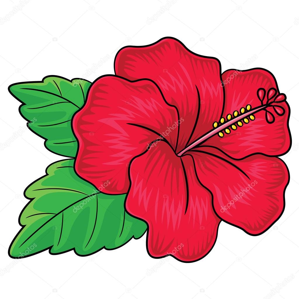 1024x1024 Quickly Hawaiian Flowers Cartoon Flower Black And White Drawing
