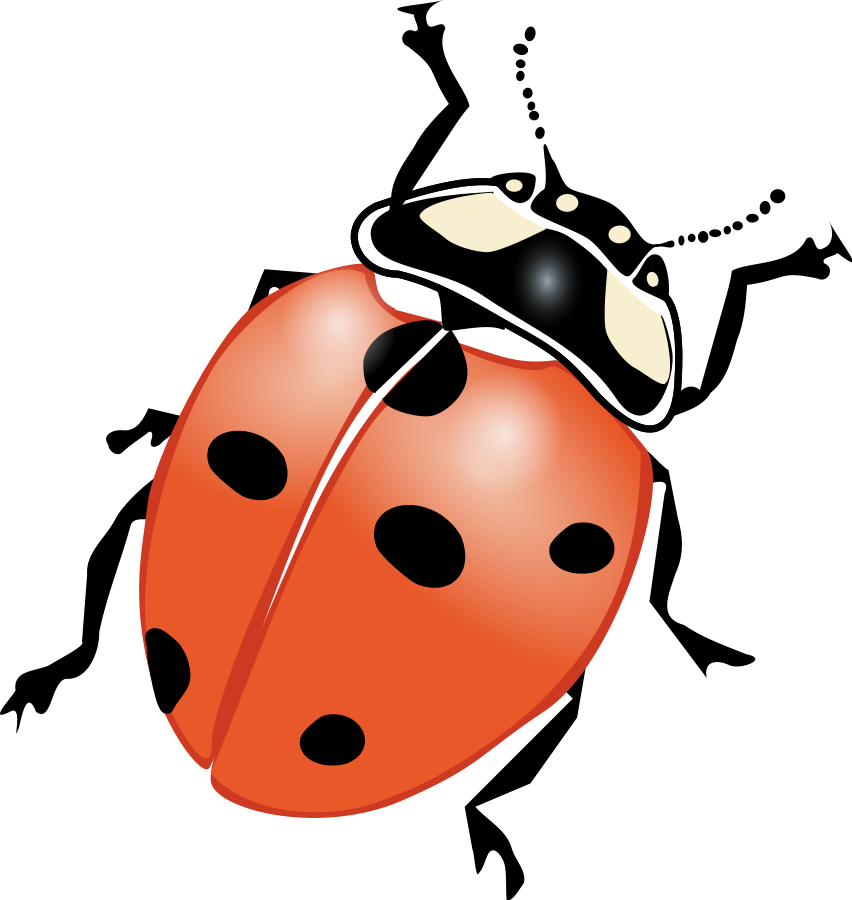 852x900 Lightning Bug Clip Art