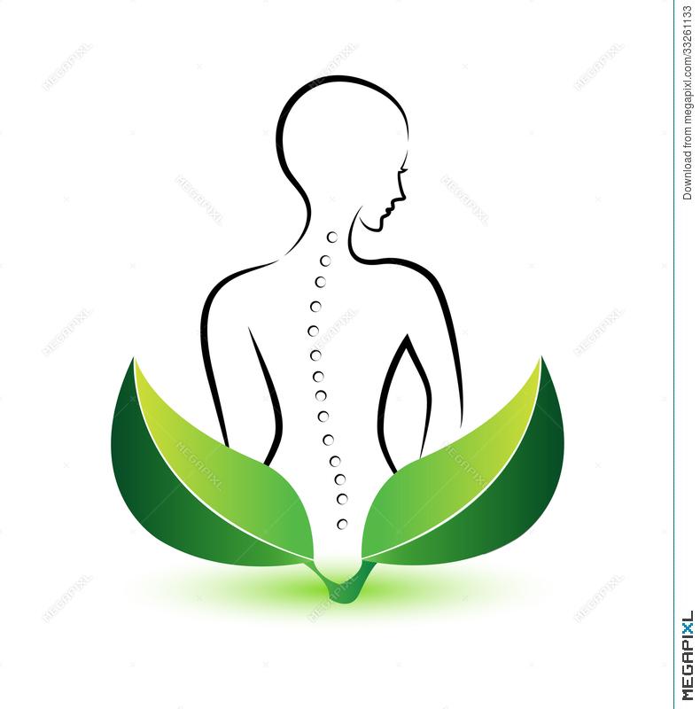 790x800 Human Spine Logo Illustration 33261133