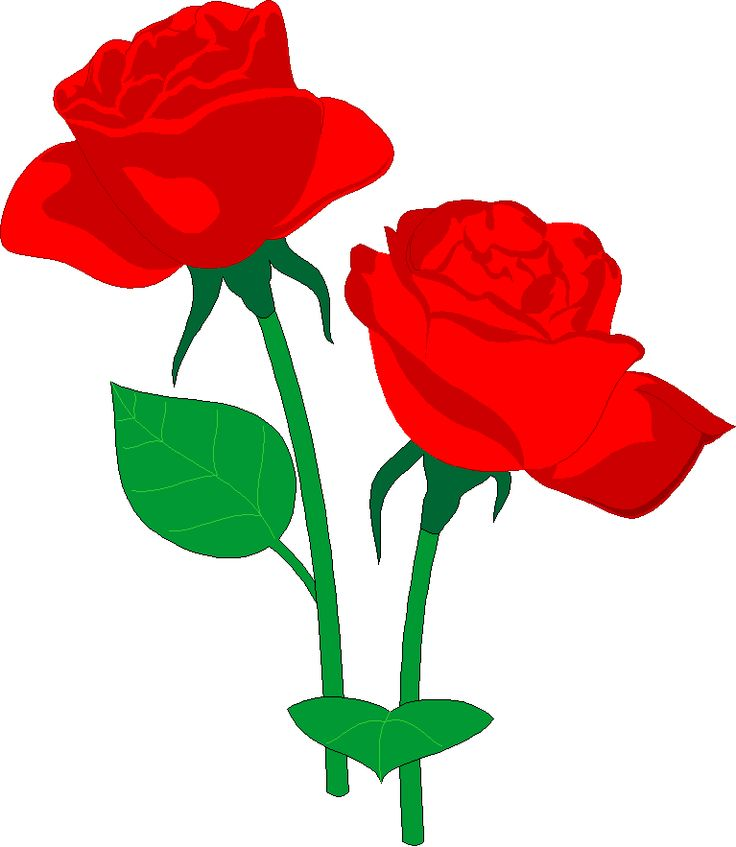 736x847 336 Best Clip Art Flowers Two Images On Art Flowers