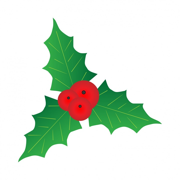 720x720 Holley Clipart Mistletoe Free Collection Download And Share