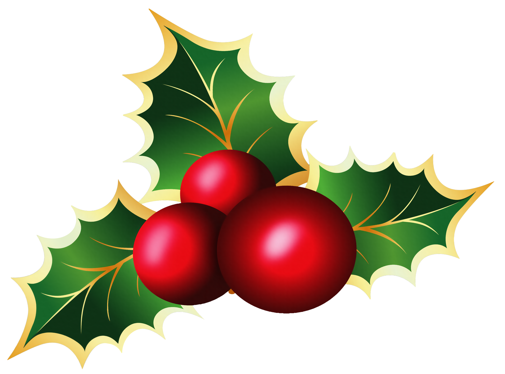 2000x1483 Transparent Christmas Mistletoe Png Pictureu200b Gallery