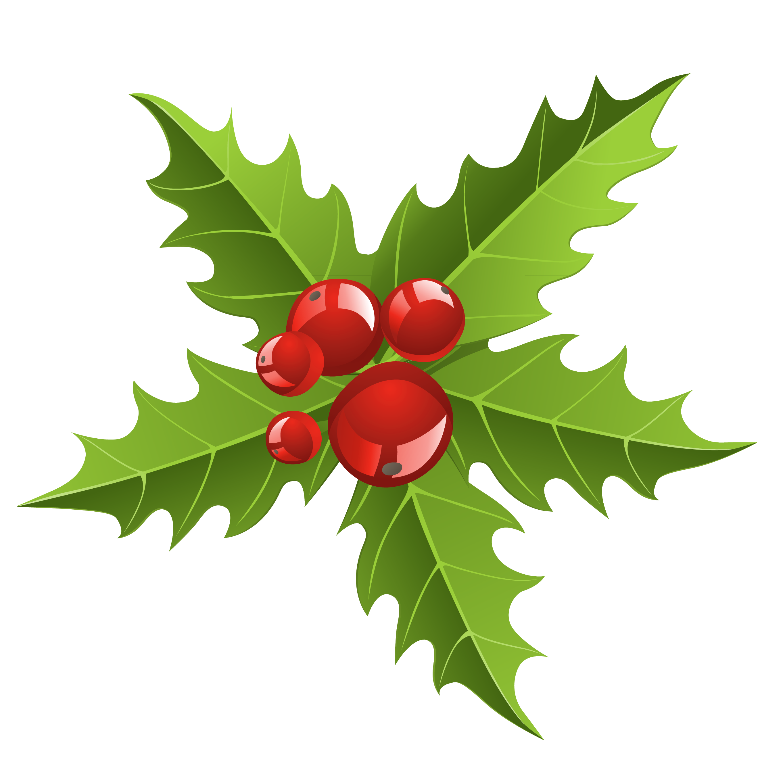 2644x2644 Chrismtmas Mistletoe Element Png Pictureu200b Gallery Yopriceville