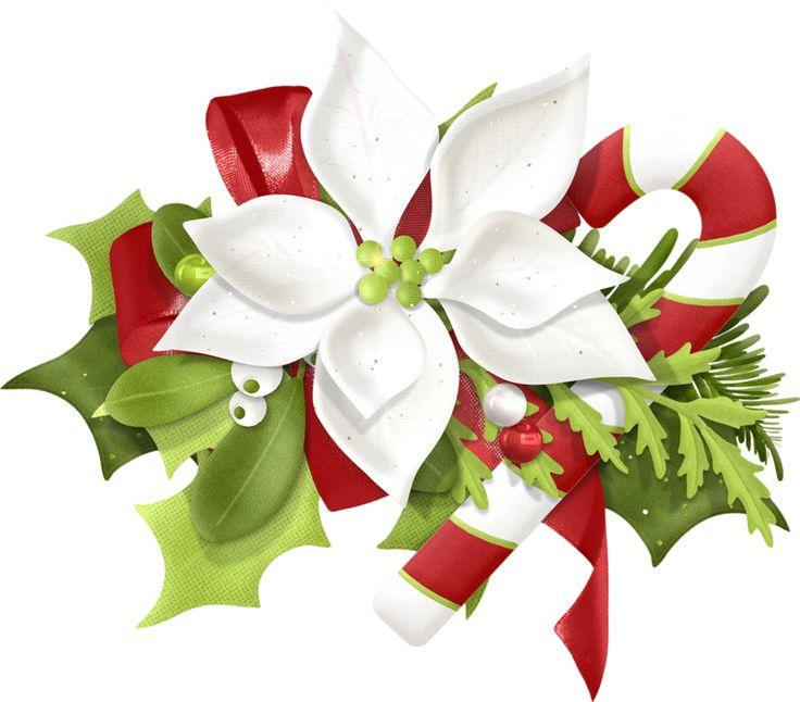 Christmas Flower Clipart