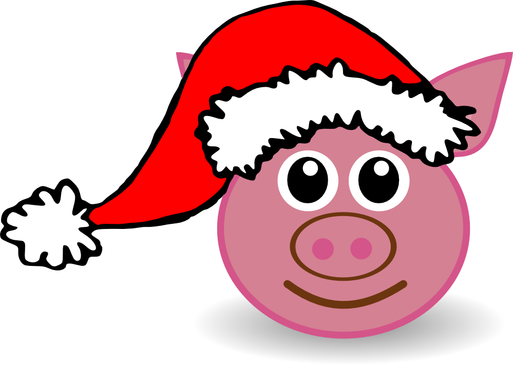 999x711 Santa Hat On Picture