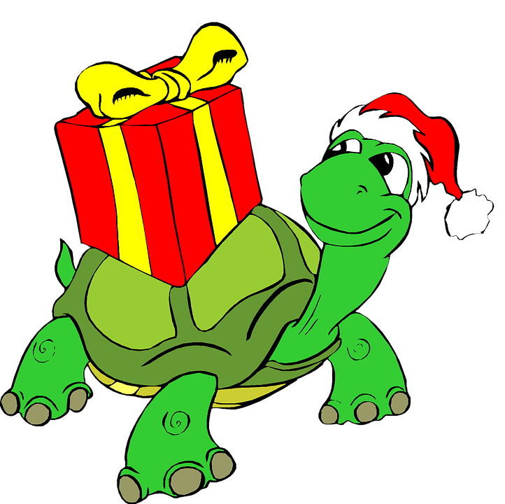 722x720 Free Photo Clip Art Present Holiday Tortoise Christmas Gift