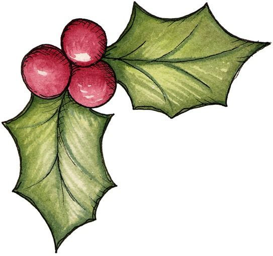 Christmas Clipart Holly.Christmas Holly Clipart At Getdrawings Com Free For