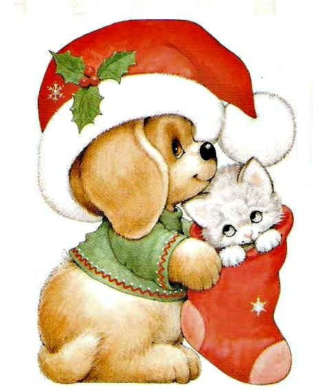 456x569 191 Best Cat Amp Dog Christmas Love Images On Merry