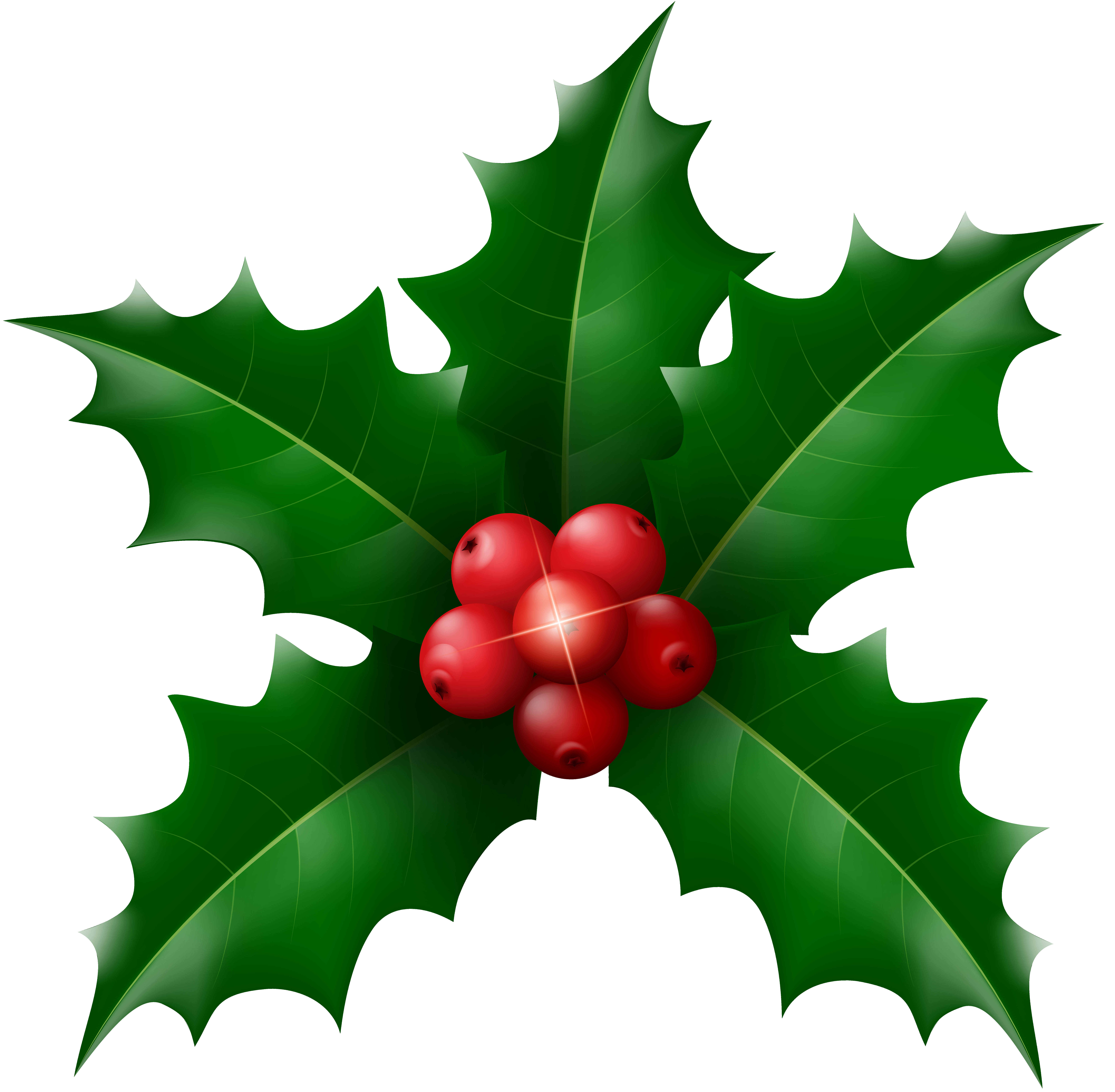 Christmas Holly Clipart Png.Christmas Mistletoe Clipart At Getdrawings Com Free For