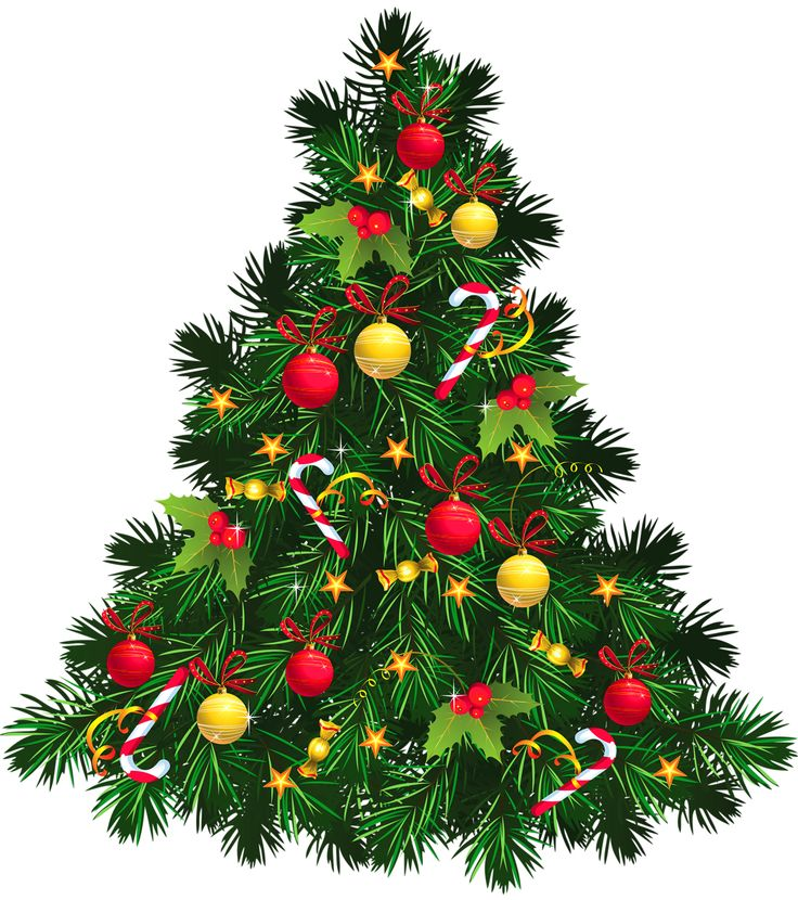 736x830 Pretty Christmas Tree Pictures