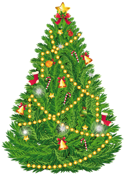 428x600 Transparent Christmas Tree Clipart PNG Picture