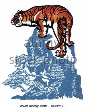 300x380 Bengals Tissue Box Clip Art