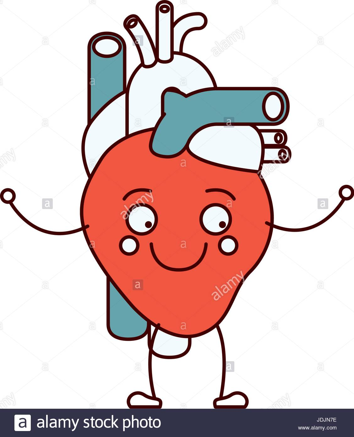 Circulatory System Clipart At Getdrawings Free For Personal