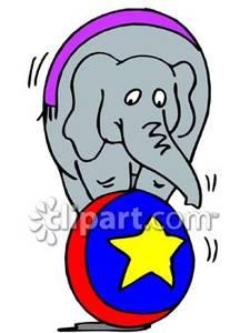 225x300 Circus Elephant Balancing On A Ball