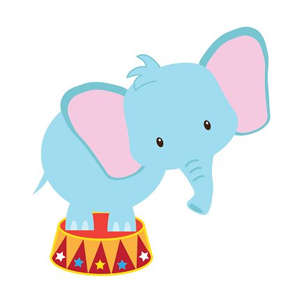 416x416 Circus Elephant Vector Illustration Premium Clipart