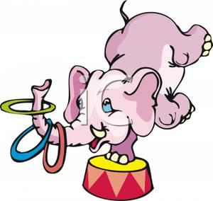 300x284 A Circus Elephant Performing Tricks