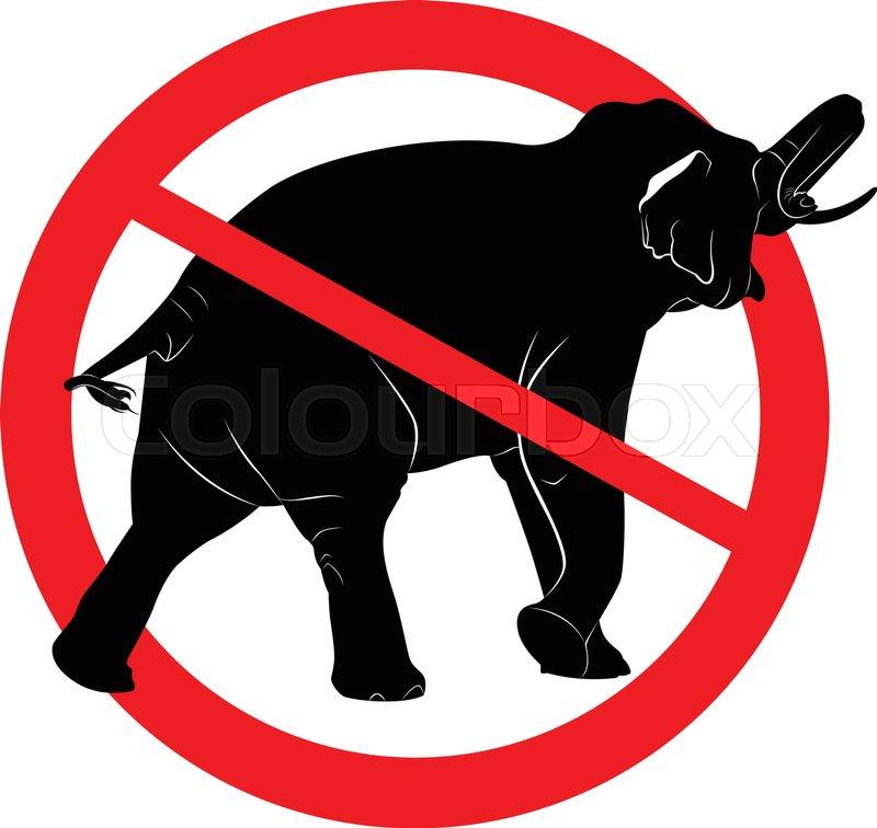 800x756 Say No! To Animals In Circuses. Ban Circus Animals Using A. Bear