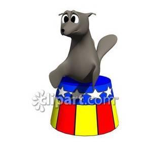 300x300 Cartoon Circus Seal