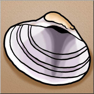304x304 Clip Art Seashells Venus Clam Shell Color I Abcteach