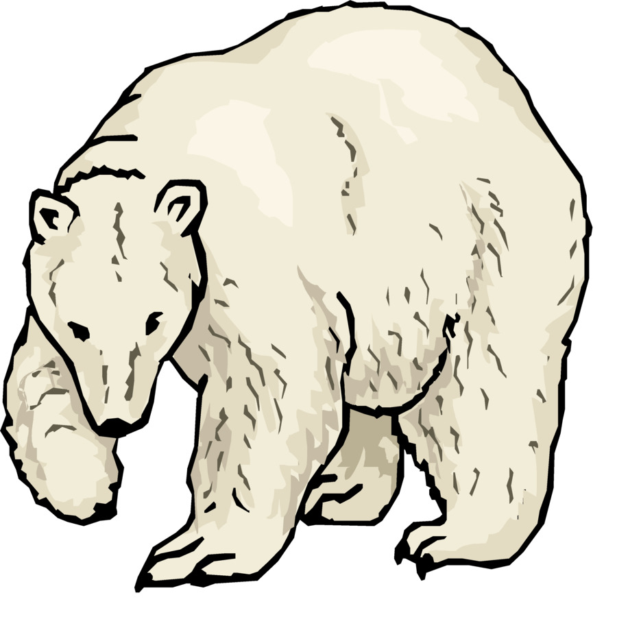 900x900 Polar Bear American Black Bear Giant Panda Clip Art