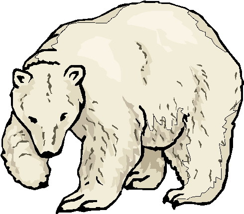 490x431 Polar Bear Images Clip Art Clip Art Polar Bear Clipart Polar Bear