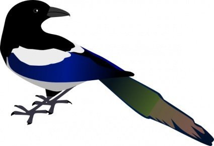 425x291 Free Magpie Clipart And Vector Graphics