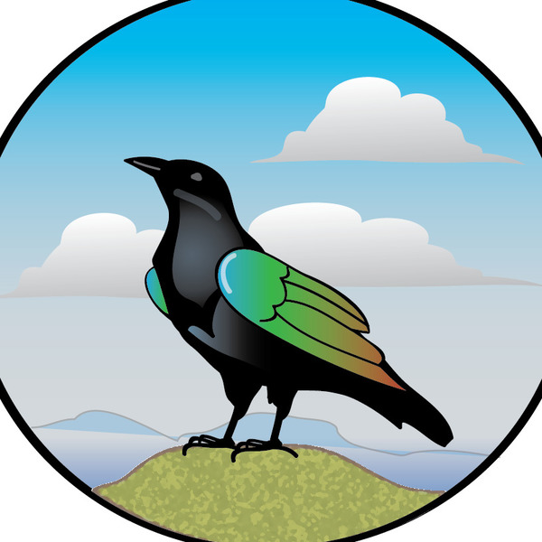 600x600 The Painted Crow Teaching Resources Teachers Pay Teachers