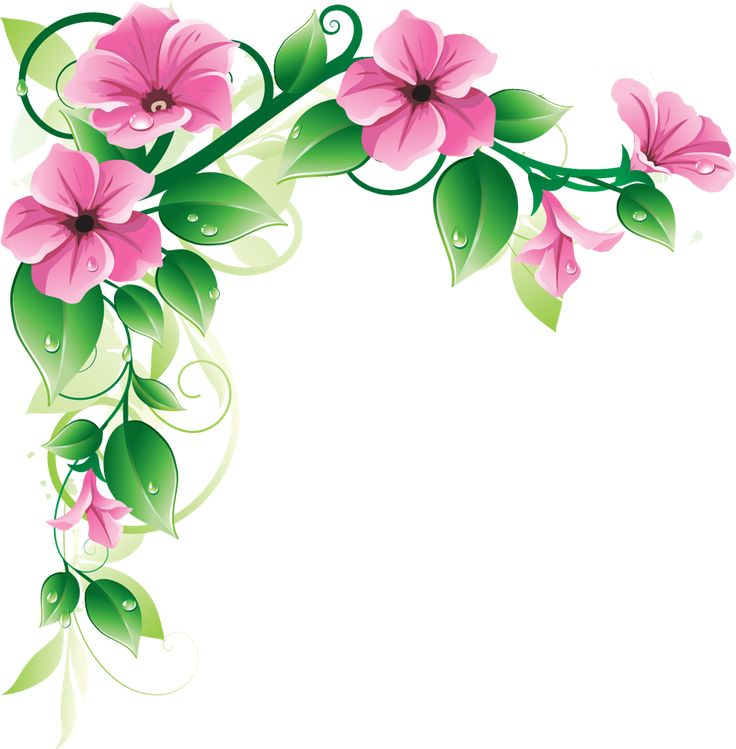 736x749 Grab This Free Clipart To Celebrate The Summer Floral Border