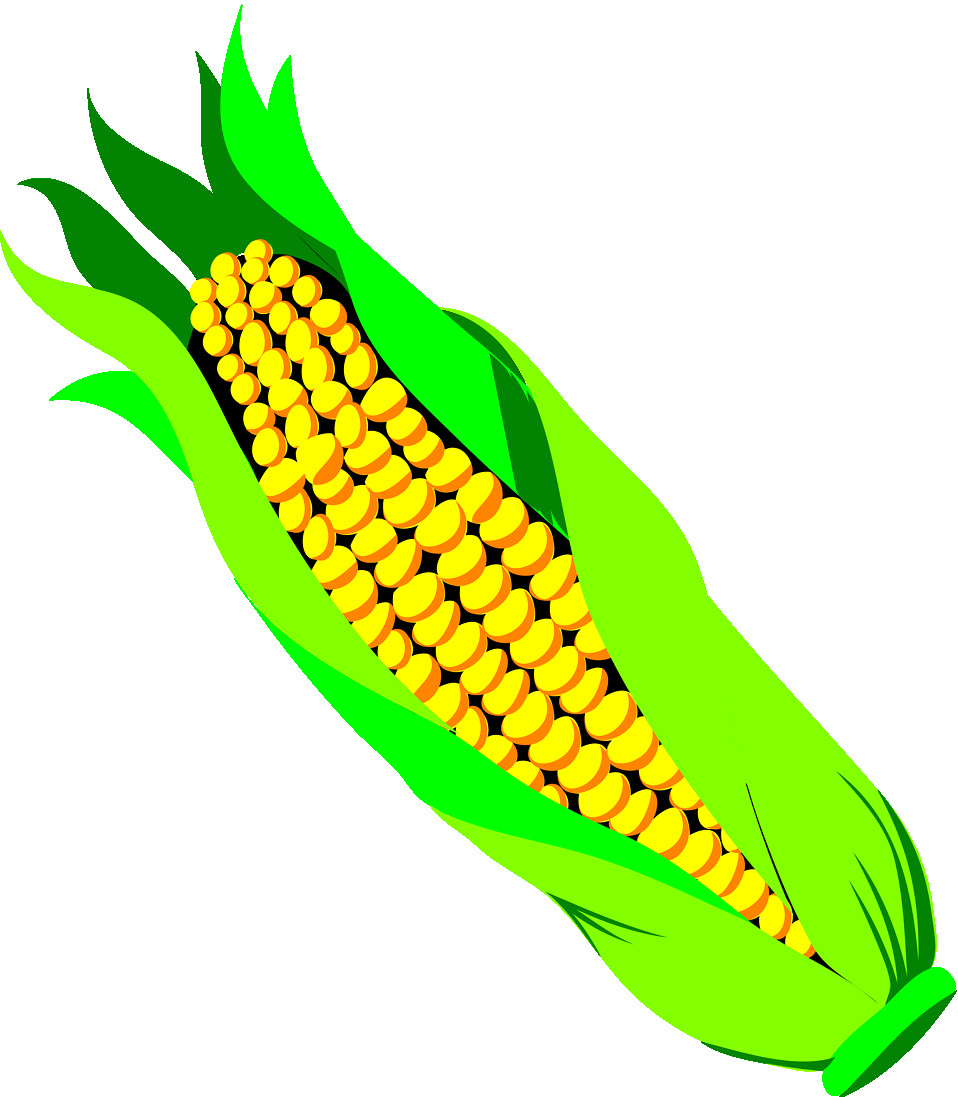 958x1097 Ear Of Corn Clipart Collection Picture A Free 4172 4125 Clip Art