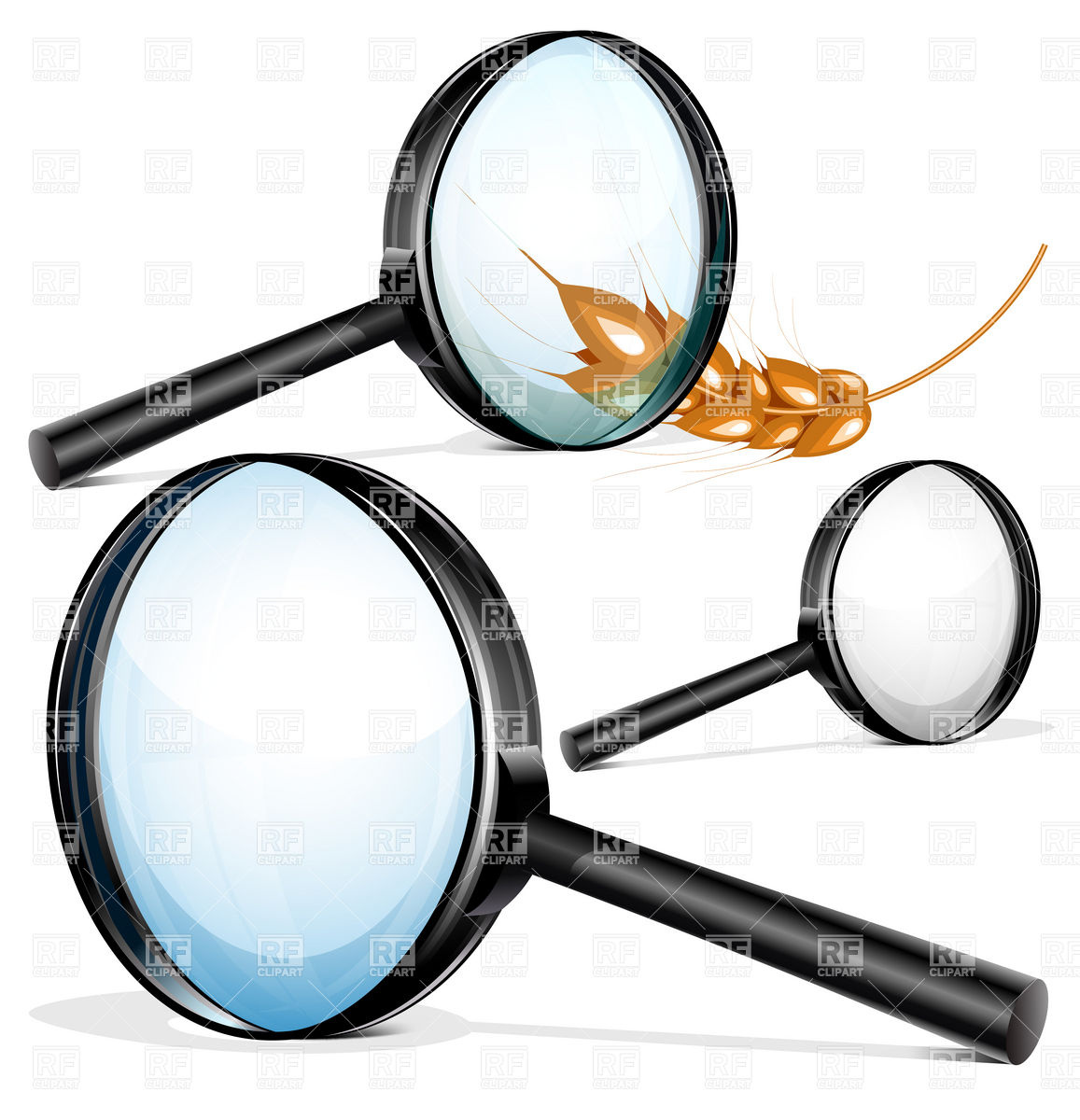 1157x1200 Magnifying Glass And Ear Of Wheat Royalty Free Vector Clip Art