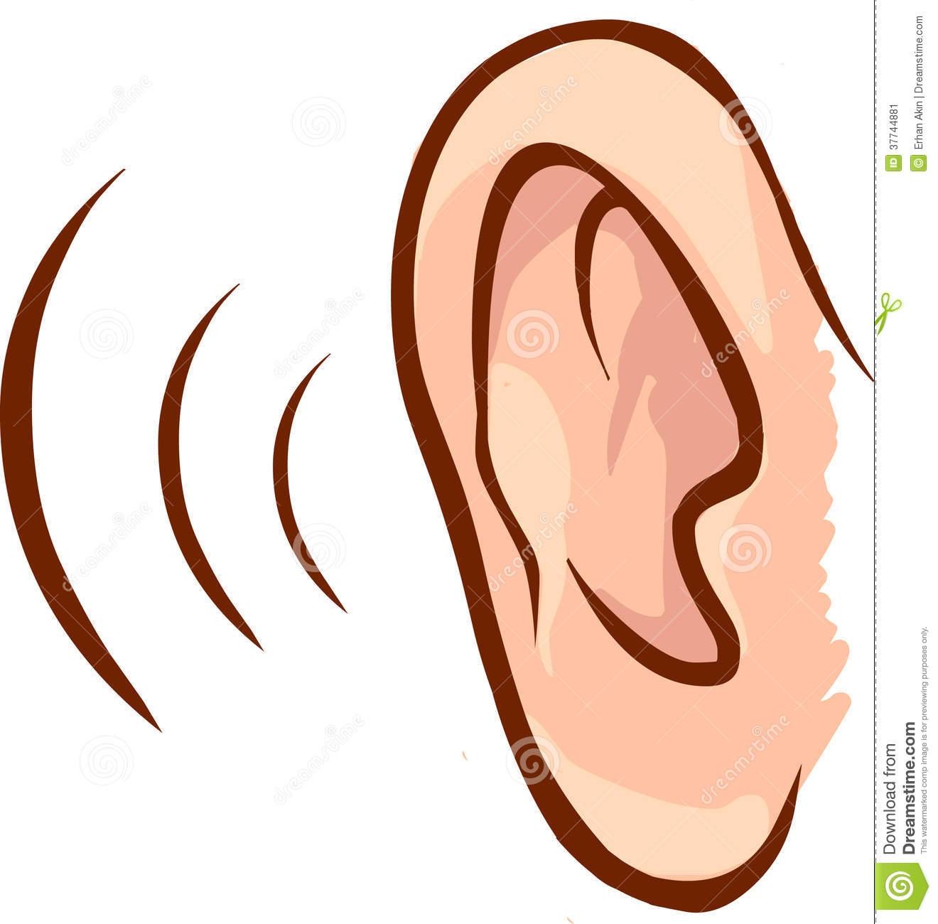 1320x1300 Unique Ear Clipart Collection