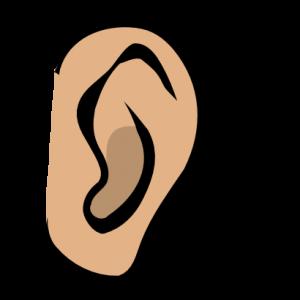 300x300 An Ear Clip Art For Your Clipart Panda