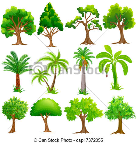 450x470 Easy To Edit Vector Illustration Of Tree Collection.