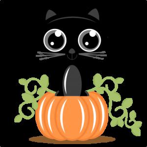 300x300 Cat On Pumpkin Svg Cutting Files For Scrapbooking Cat Svg Cut File