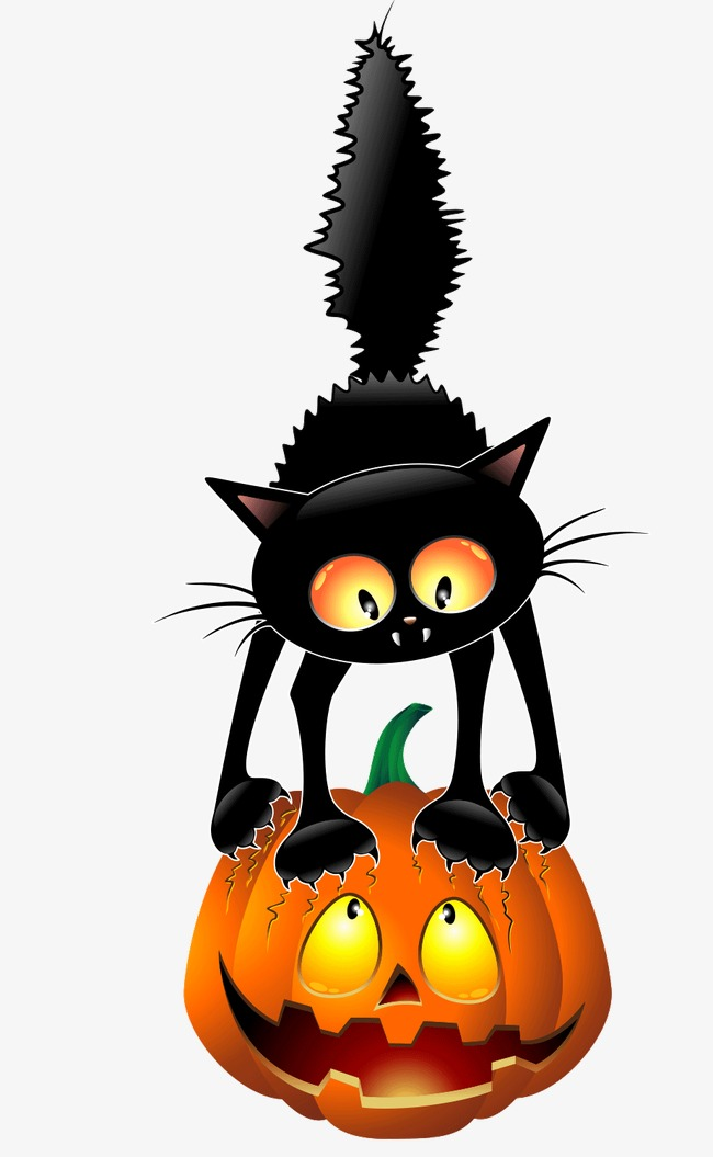 650x1055 Black Cat Pumpkin, Black Cat, Pumpkin, Halloween Png Image
